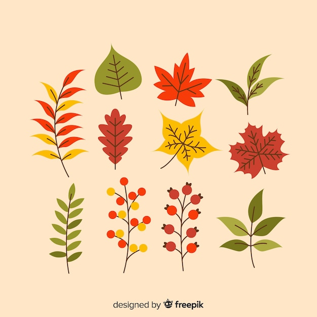 Autumn leaves collection flat style Free Vector