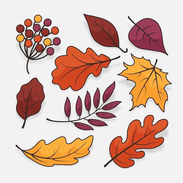 Коллекция осенних листьев Premium векторы