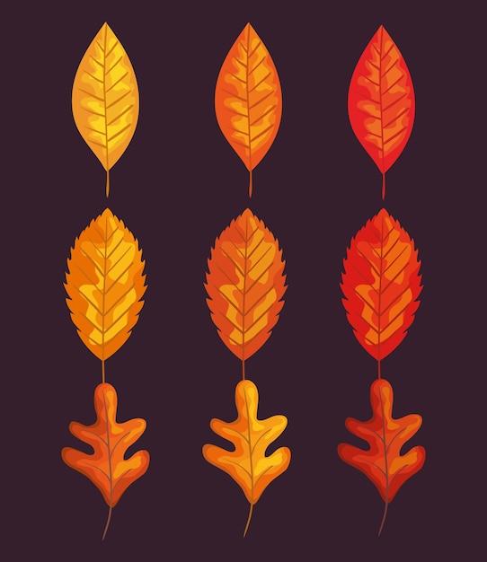 紅葉セットデザイン、季節の自然飾り庭の装飾と植物学のテーマイラスト Premiumベクター