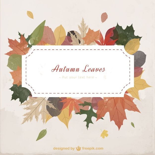 autumn leaves template vector premium download