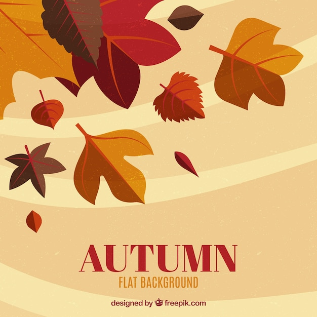 Autumn leaves with flat design