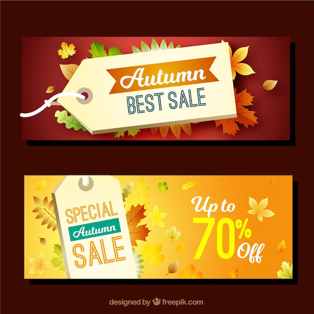 Autumn promotions banners with realistic leaves