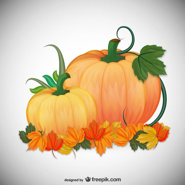 Autumn Pumpkins Illustration Vector