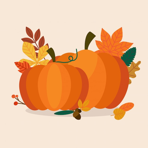 Autumn pumpkins and leaves. flat design modern  business concept. Premium Vector