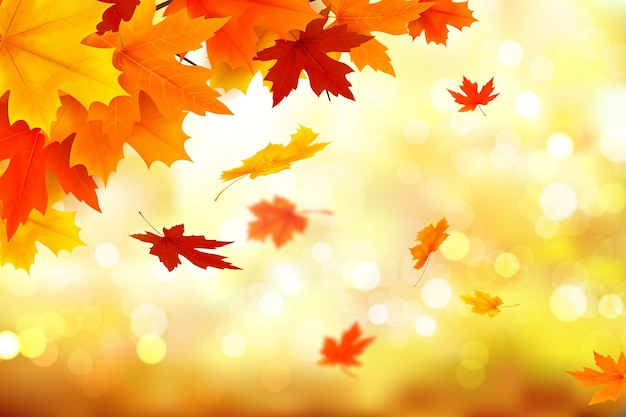 Autumn realistic background theme Free Vector