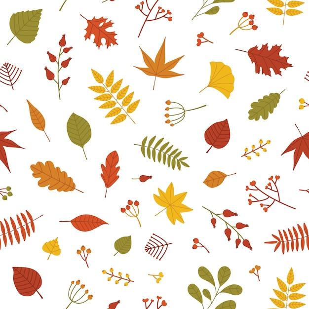 倒れた木の葉と果実の小枝と秋のシームレスパターン Premiumベクター