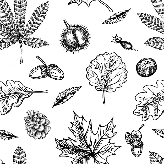 Premium Vector Autumn Seamless Pattern With Leaf Autumn Leaf Background Cute Backdrop Leaf Fall Autumn Leaves Cones Chestnuts Acorns And Berries The Elegant The Template For Fashion Prints