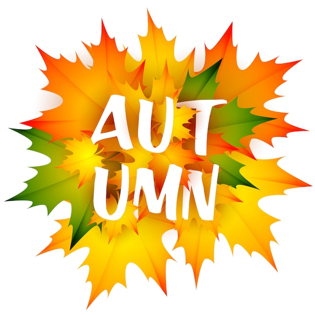 Autumn seasonal leaflet with bunch of leaves Free Vector