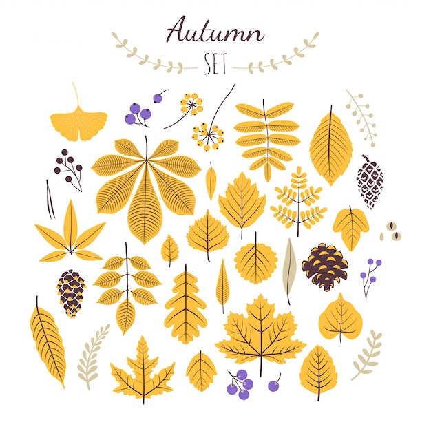 Autumn set elements. fall leaves and berries. Premium Vector