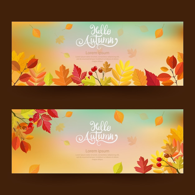 Autumn with beautiful leaves. Premium Vector