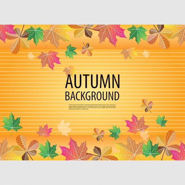 Осенний желтый фон Premium векторы