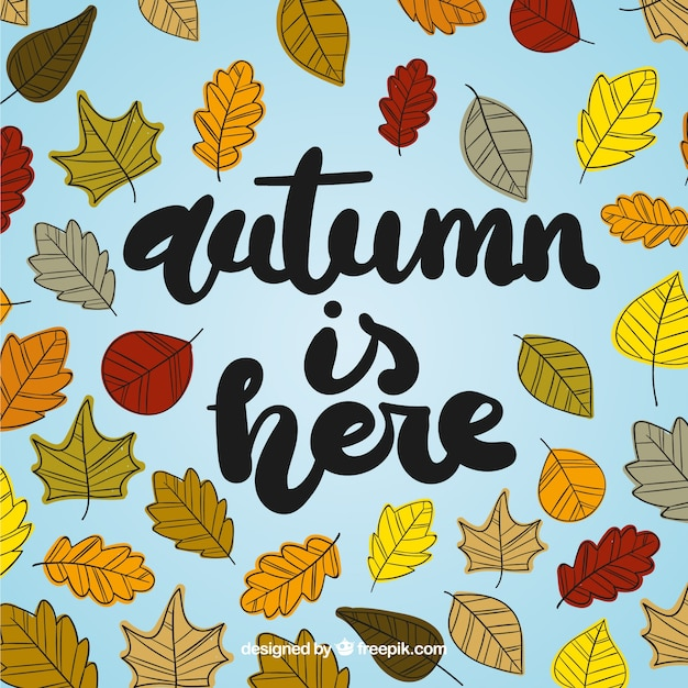 Autumnal background with hand drawn leaves