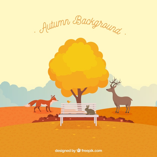 Autumnal landscape background with bench and\ tree