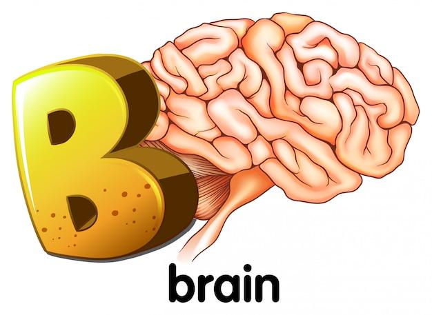 Буква b для мозга Бесплатные векторы
