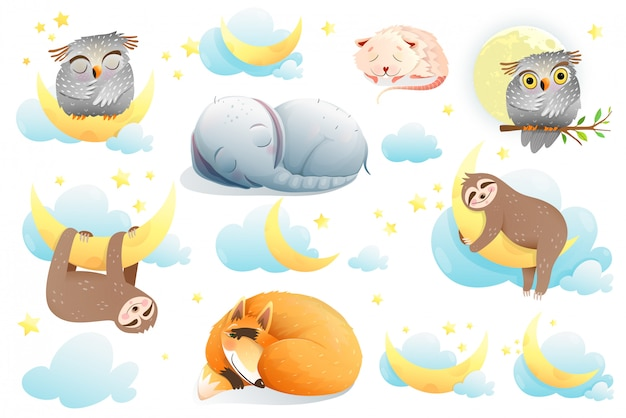 Baby animals cartoon collection, funny cute elephant, sloth, fox, owl, mouse characters dreaming, isolated clipart for children. Premium Vector
