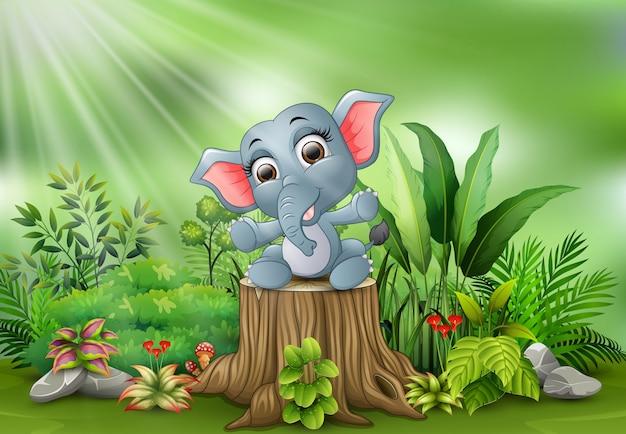 Baby elephant sitting on tree stump with green plants Premium Vector