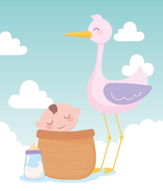 Baby shower, stork and little boy in basket, celebration welcome newborn Premium Vector