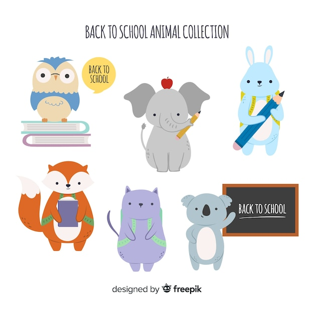 Back to school animal collection with bird Free Vector