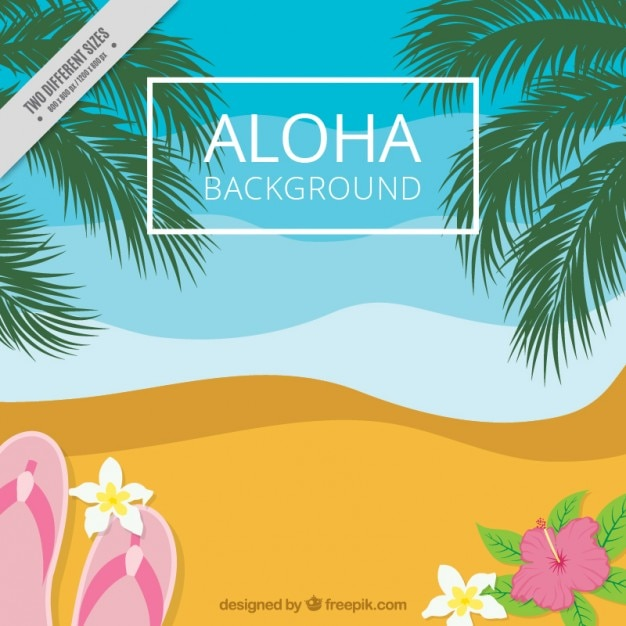 0f6ff0248 Background of beach flip-flops and palm trees Free Vector