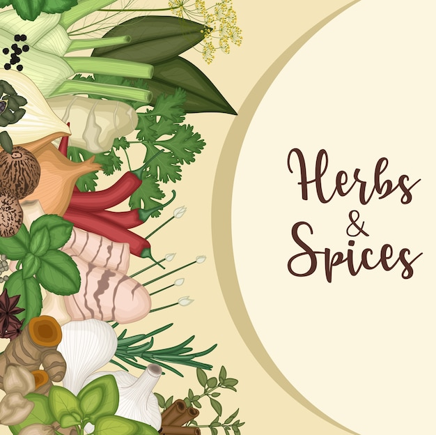 Background design with herbs and spices Premium Vector