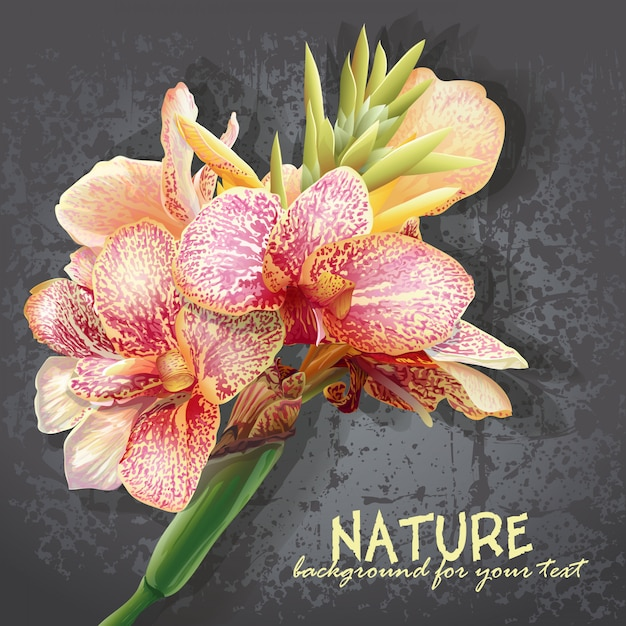 분홍색 얼룩이있는 노란색 꽃과 텍스트에 대 한 배경. 난초와 같은 꽃. 프리미엄 벡터