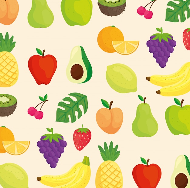 Background of fruits, avocado and tropical leaves Premium Vector