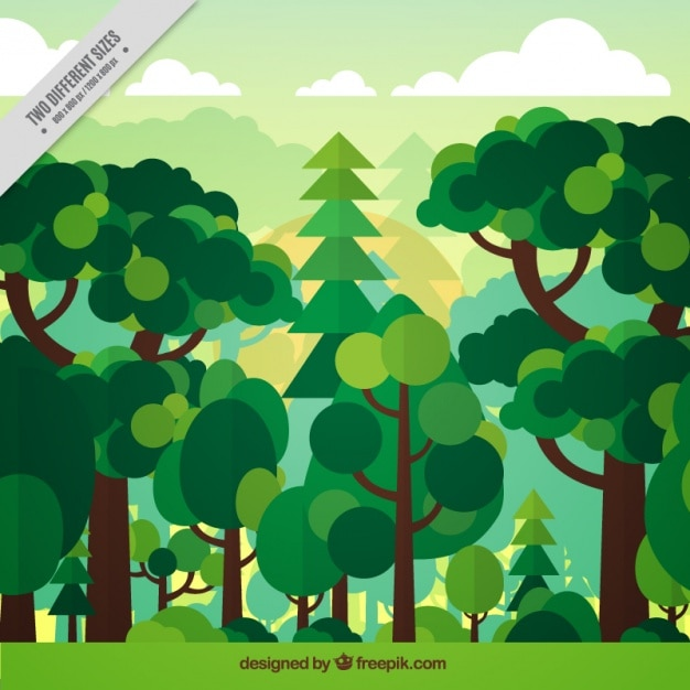 Background of green forest in flat design Free Vector