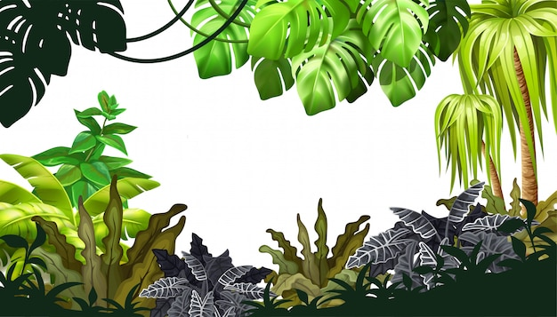 Background jungle with palm trees and lianas. Premium Vector