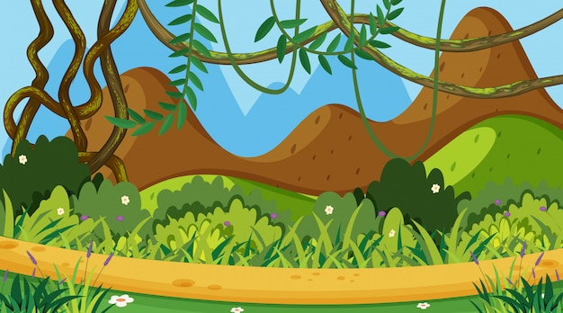 Background  of landscape with green grass on mountain Premium Vector