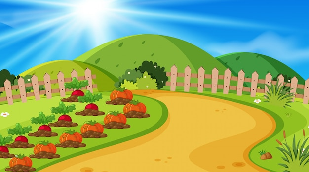 Background  of landscape with vegetables in garden Premium Vector
