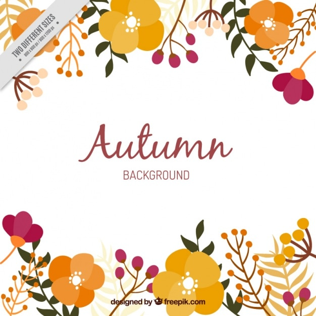 Background of autumnal flowers Free Vector