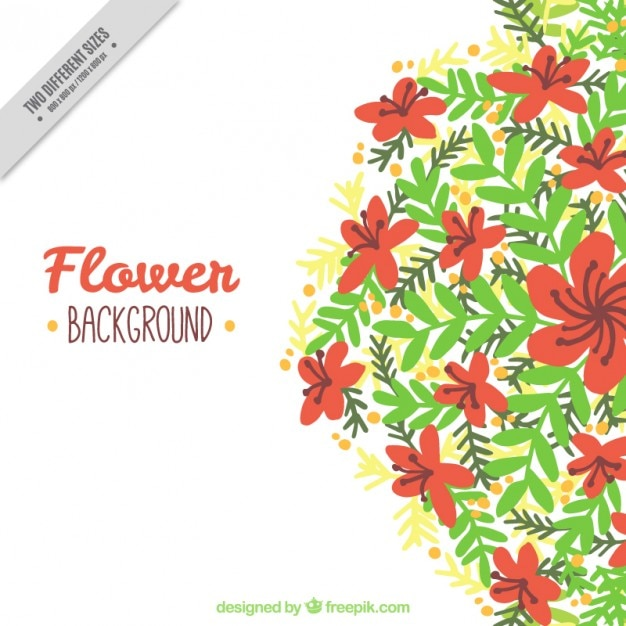 Background of beautiful flowers with hand drawn\ leaves