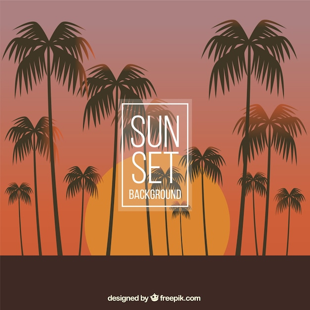 Background of beautiful sunset with palm\ trees
