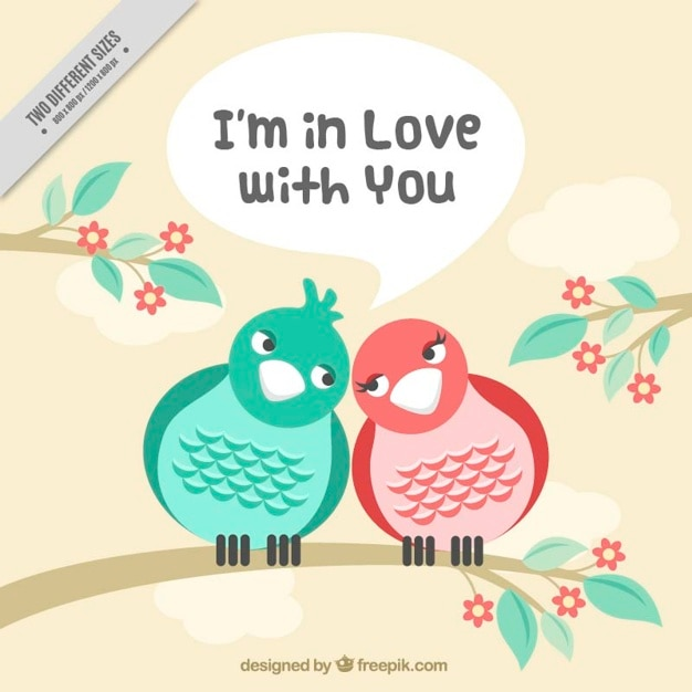 Background of birds in love together