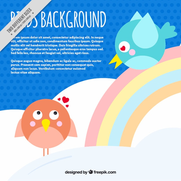 Background of birds in love with rainbow