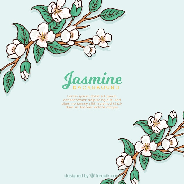 Background of branches with hand drawn jasmine and leaves Free Vector