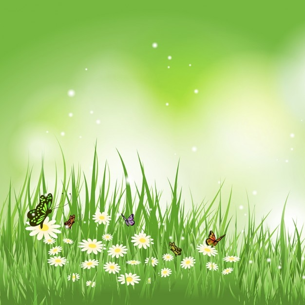 Background of butterflies flying in a grass with daisies Free Vector