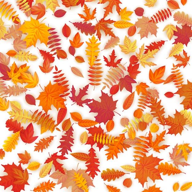 ぬれた秋紅葉の背景。 Premiumベクター