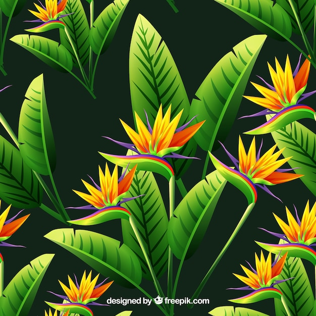 Background of flowers and tropical\ leaves