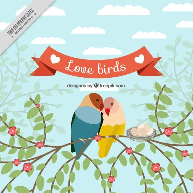 Background of loving birds on a branch
