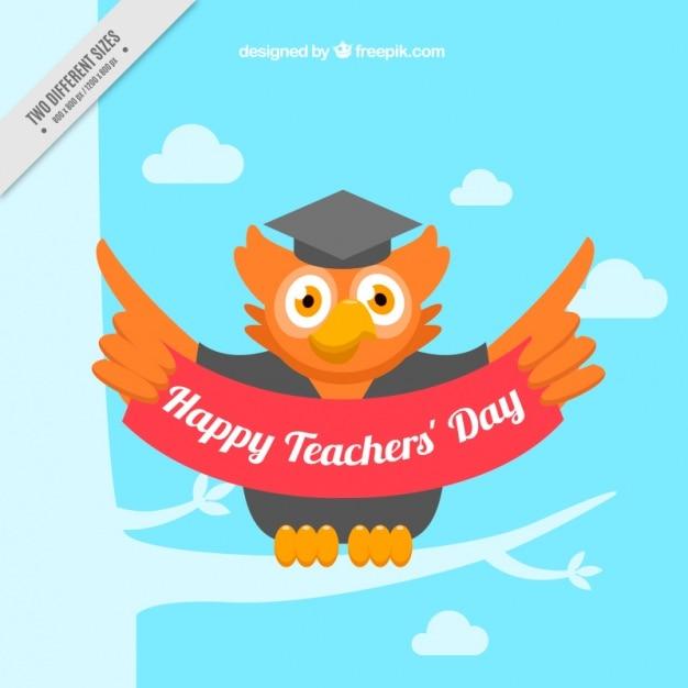 Background of owl teacher\'s day