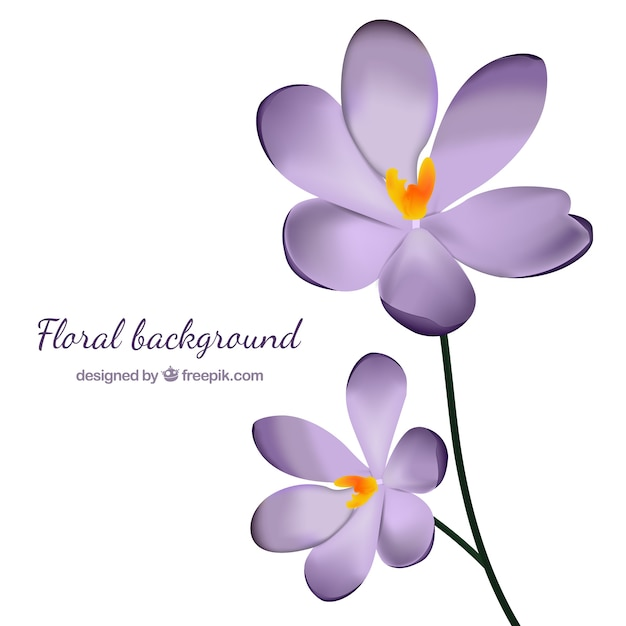 Background of pretty purple flowers in\ realistic style