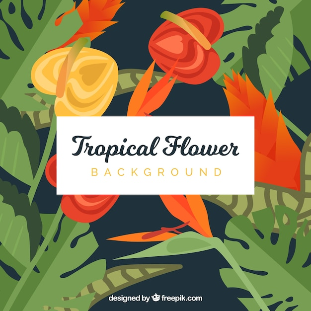 Background of tropical flowers and\ leaves