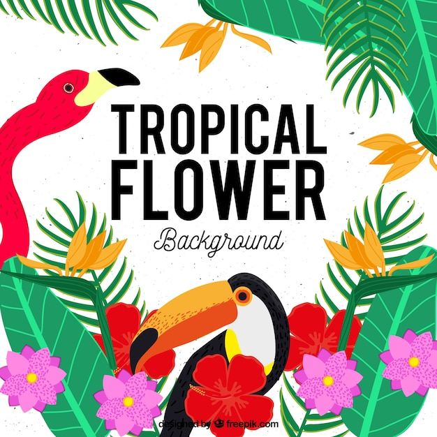 Background of tropical flowers with flamingo\ and toucan