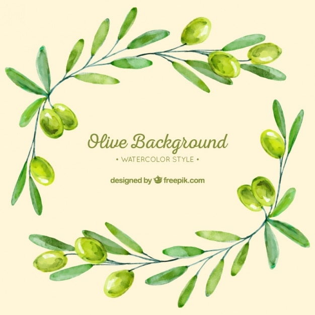 Background of olive branches in green tones Free Vector