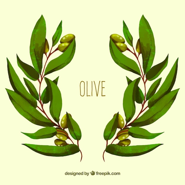 Background of olive branches in watercolor style Free Vector