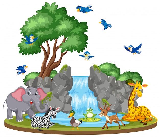 動物と滝の背景シーン Premiumベクター