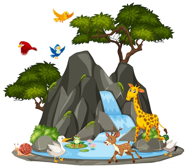 Background scene of wildlife animals and waterfall Premium Vector