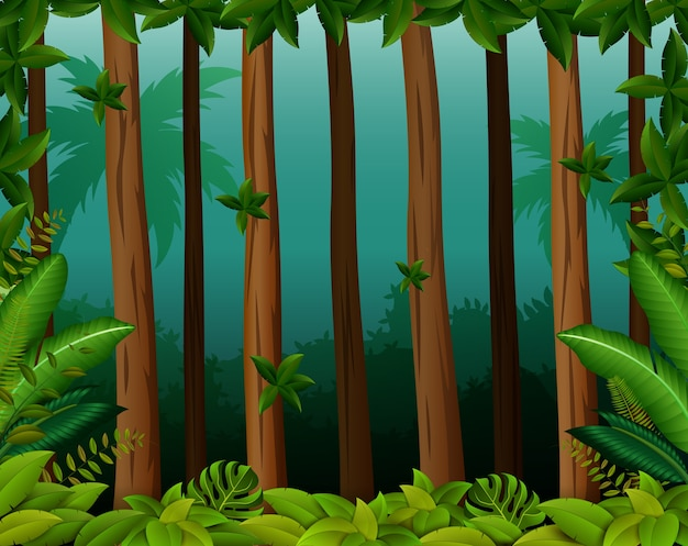 Background scene with trees in forest Premium Vector