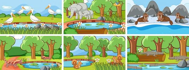 야생 동물의 배경 장면 무료 벡터